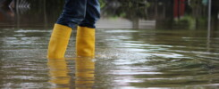 Keyword(s): water damage restoration Tampa tips
