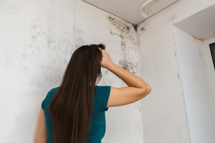 Common Signs of Water Damage